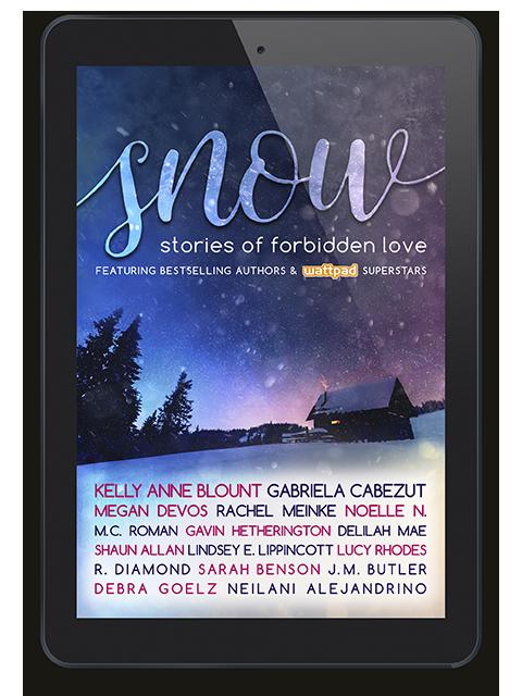 00 SNOW e-reader lr